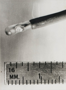 Intracardiac probe used in animal research (1964)