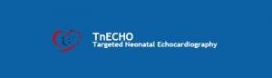 Targeted Neonatal Echocardiography