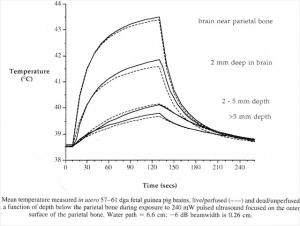 In vivo heating effect of ultrasound